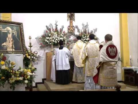 Christus vincit! Christus regnat! Christus imperat! Solemnidad de San Pio X 03 de Septiembre de 2019