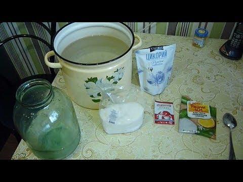 Растение цикорий: свойства и применение. Цикорий
