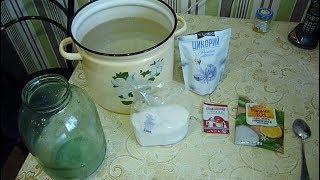 Квас своими руками сделать из цикория вкусный домашний Kvass make chicory delicious homemade