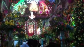 Fiesta de san Miguel tecuitlapa