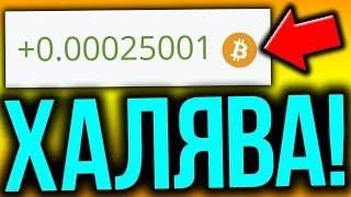 Easybizzi Отзывы с Украины Заработок биткоинов не Dreamtowards Onecoin Elysiumcompany Redex Tirus LR