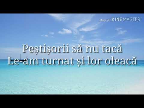 Cleopatra Stratan- Zunea Zunea (Lyrics/Versuri)
