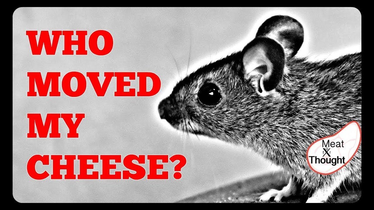 who stole my cheese summary