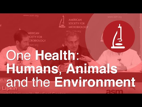One Health: Humans, Animals and the Environment