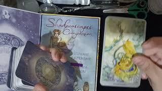 ไพ่ทาโรต์ Shadowscapes Tarot ลายเส้นสวยงามมาก อาจเข้าใจหรือตีความยากสำหรับมือใหม่