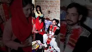 Kot sabzal Rais Nadir Ali