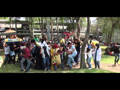 Harlem Shake FMVZ