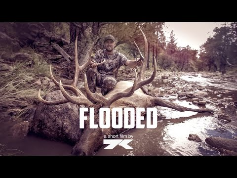 "340"" NM Archery Elk Hunt 