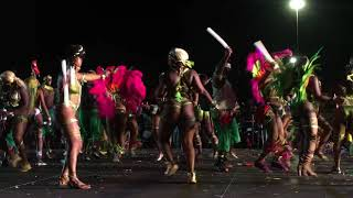 2018 Miami Carnival-Freaks Mas Band