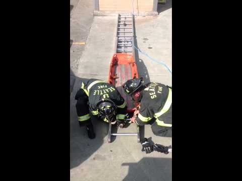 Ground Ladder Victim Rescue Funnycat Tv