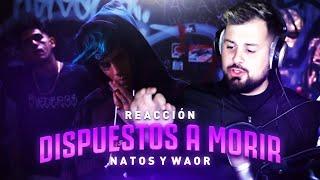 Download Lagu PAPO reacciona a DISPUESTOS A MORIR Natos y Waor ft. C.R.O & Homer el Mero Mero Terbaru