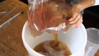 Make Your Own Wine (chardonnay)-vintner's Harvest-part 1