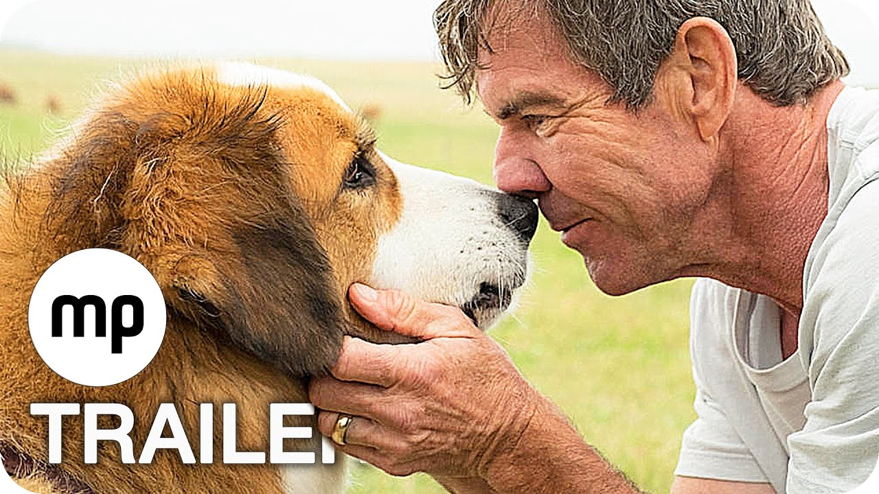 A Dog S Purpose Rating