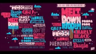 Phenomden - Ich vermisse dich (Meltdown Riddim) [Soul Rebel Sound & Mr.Mento Production] Oct.2012