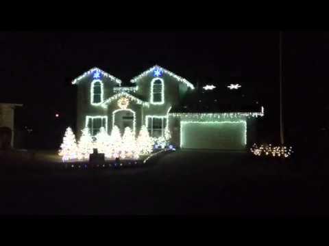 Animal Martin Garrix-7 Christmas light show. Georgetown tx