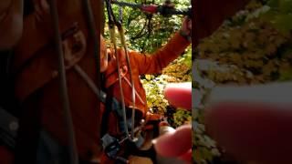 Treetop trekking - 17
