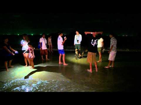 Thai-American & Thai-European Youth Heritage Program 2015/2558 @ Ao Manao beach (4K UHD)