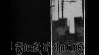 Forest Of Shadows - November Dream