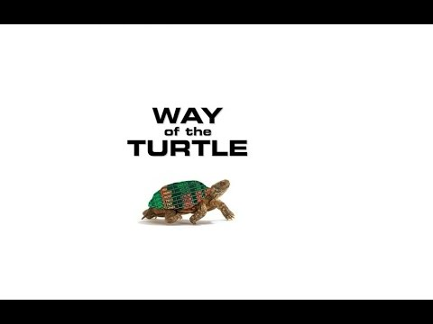 Way of the Turtle Turtle Trading System