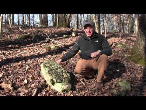 John Bunn: Rare Archaeological Find in #HarrisCountyGA