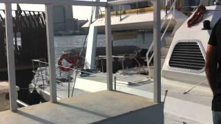 catamaran cruise tour dubai