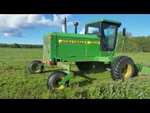 Mowing More Second Crop Alfalfa!!