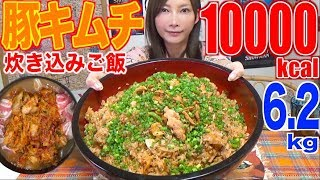 【MUKBANG】 SO EASY! USING RICE COOKER!! Tasty Pork Kimchi Mixed Rice [6.2Kg] 10000kcal [Use CC]