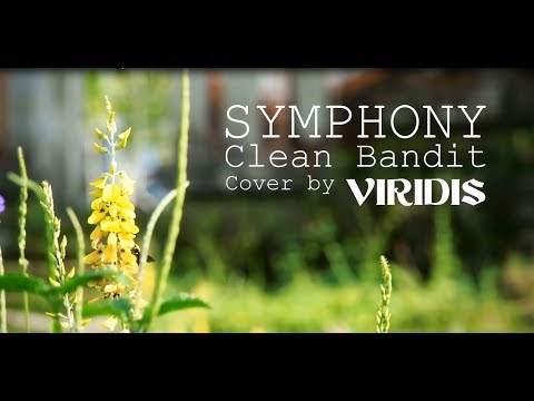 Clean Bandit - Symphony feat. Zara Larsson (Fingerstyle Ethnic Cover)