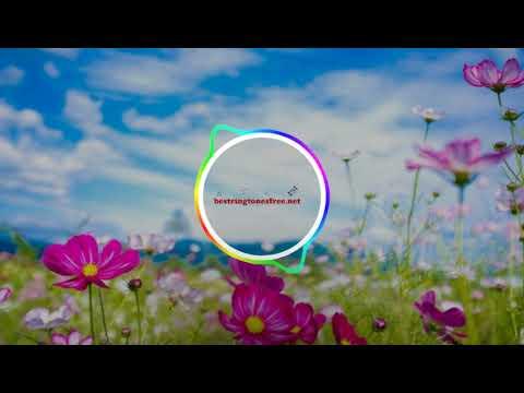 Download Chun Li – Nicki Minaj Ringtone | Best Ringtones Download Free For Mobile