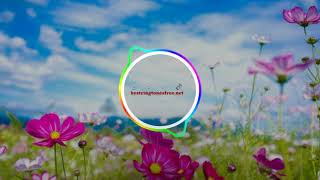 Download Chun Li – Nicki Minaj ringtone   Best Ringtones download Free for mobile