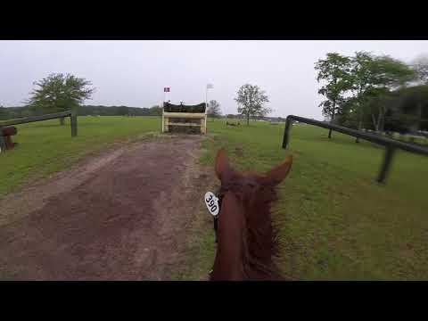 Helmet Cam: Sharp Decision (Novice | 2018 Ocala Three Day Event)