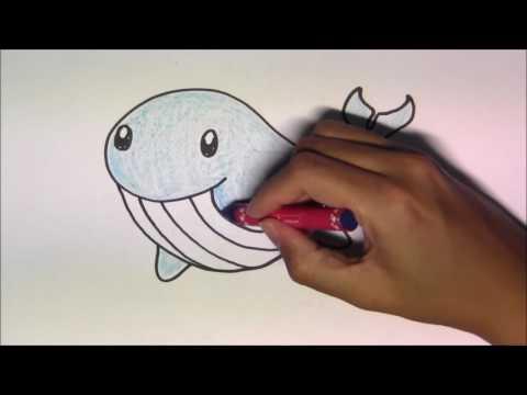 วาดรูปการ์ตูนน่ารัก ระบายสี และเรียนรู้ภาษาอังกฤษ Whale ปลาวาฬ