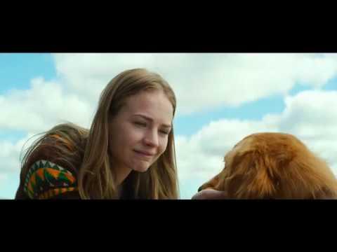 Psia Duša (Dog´s Purpose) - oficálny trailer