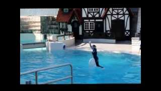 The complete Dolphin Show at Marineland, Niagara