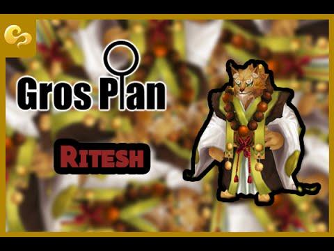 Summoners War - Gros plan - Ritesh