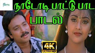 Naadodi Paattu Paada ||நாடோடி பாட்டு பாட ||  SPB ||Love  H D Song