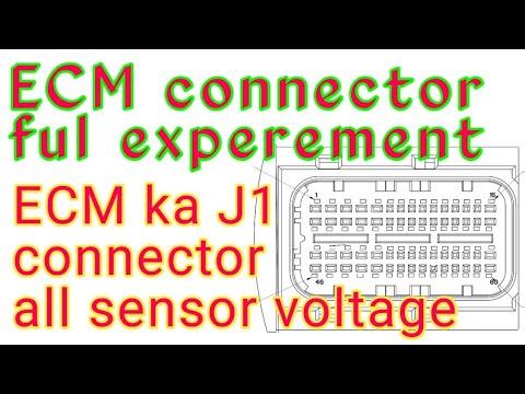 Ecm All Sensor Voltage.ecm Wairing All Connection.ecm Wairing All Sensor.wairing Daiogram.xpland