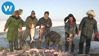 China - Die Eisfischer vom Chagan-See (360° - GEO Reportage)