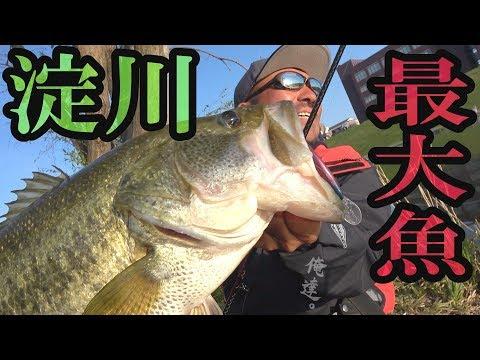 平成最後のロクマル!しかも淀川。【バス釣り】