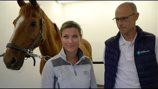 Vlog39: Reklame | Når hesten har vondt i ryggen