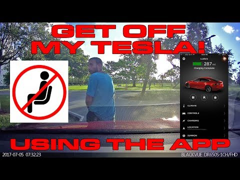 Scaring a guy sitting on my Tesla P100D using the App - Honk Horn or Summon?
