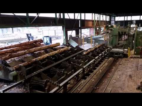EUROWOOD Лесопильный завод
