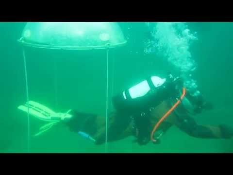 Viking diver sings underwater at White Star Quarry