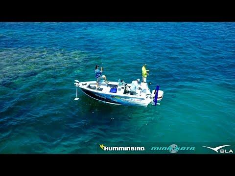 BLA – Humminbird  Minn Kota – Fishing the Great Barrier Reef with Michael Guest, Reel Action TV