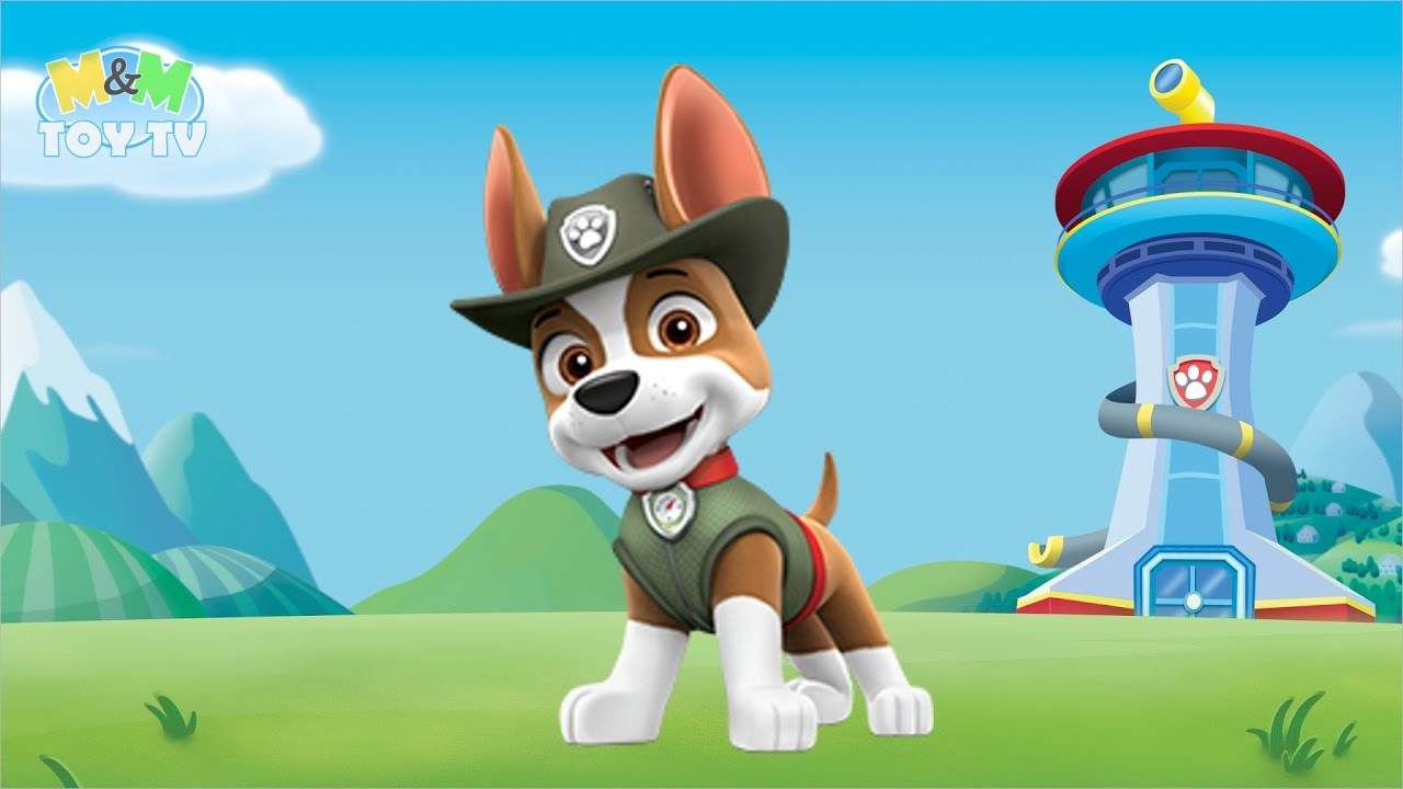coloring  paw patrol  tracker  jeepdriving pup with