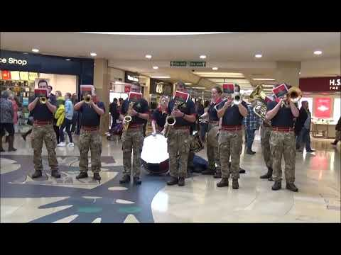 The Royal Artillery Contemporary Brass Ensemble - Cardiff Poppy Day 2017
