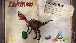 ARK: Survival Evolved [GUIDE/Deutsch] ** Oviraptor zähmen **