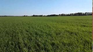 25 000 ha Farm Ukraine
