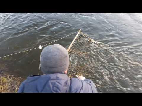 как сделать телевизор на ловлю рыбы