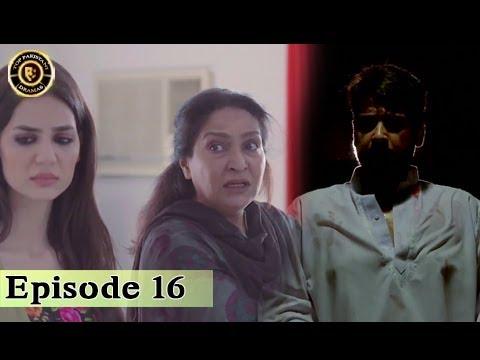 Zakham Episode 16 – 27th July 2017 – Top Pakistani Dramas